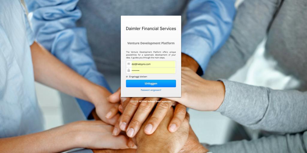 Das Venture Developement System angepasst für Daimler Financial Service AG